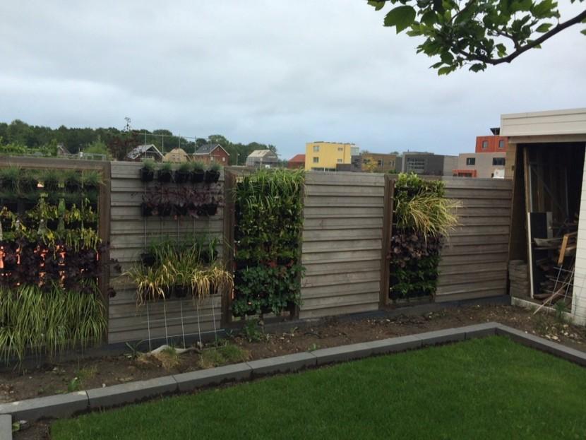Verticale tuin doe het zelf