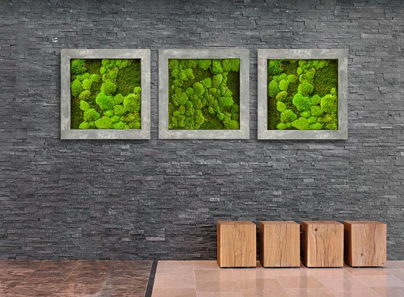 Verticale Tuin Binnen : 5 voordelen van een verticale tuin gevelplanten.com