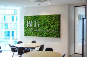 bedrijfslogo in living wall door Gevelplanten.com