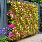 verticale bloemenzee aan schutting