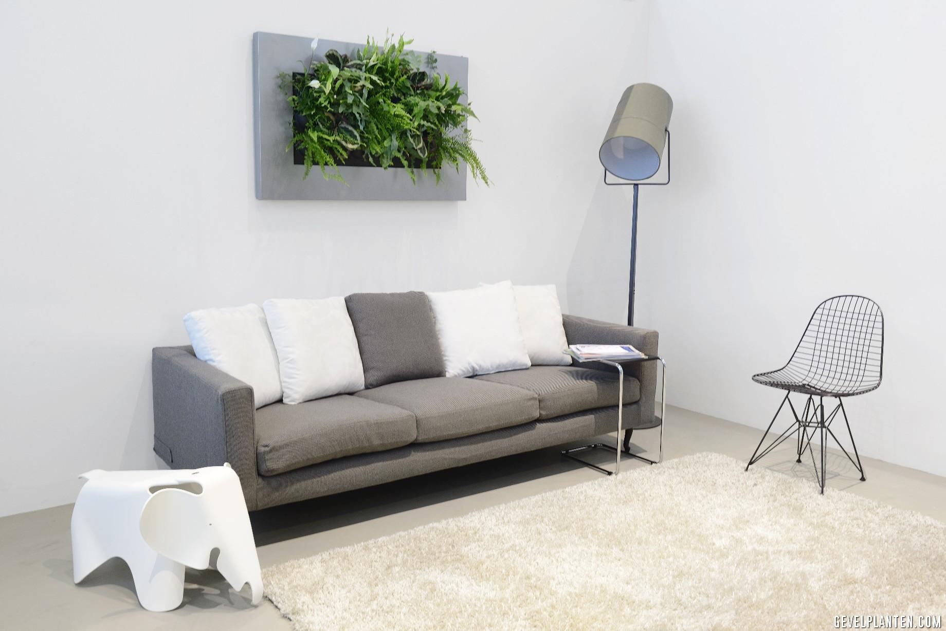 Verticale Tuin Woonkamer : Groene livingwall met planten gevelplanten.com